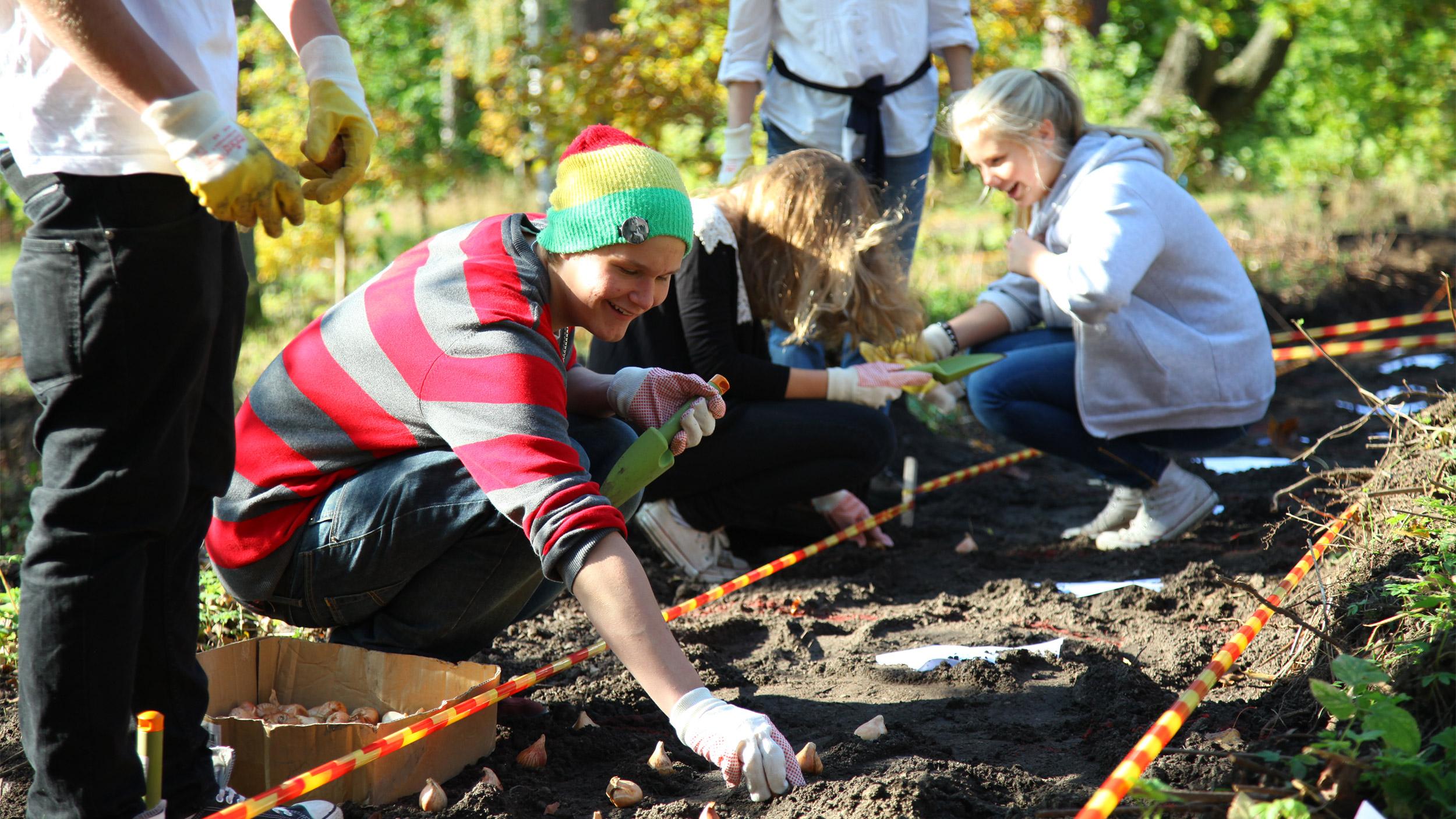 Kauniaissa toteutettiin osallistava taideprojekti Rytmi, joka kutsui asukkaat istuttamaan väliaikaisen puiston
